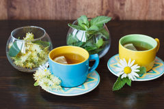 Cups of herbal tea with camomile and mint leaves Royalty Free Stock Images