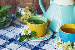 Cups of herbal tea with camomile and mint leaves Stock Images