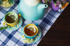 Cups of herbal tea with camomile and mint leaves Stock Image