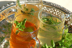 Cups with herbal tea and fresh herbs Royalty Free Stock Photos