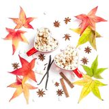 Cups hot drink spices Flat lay decoration autumn leaves. Cups of hot drink with spices on white background. Flat lay decoration autumn leaves royalty free stock photo