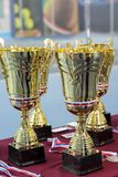 Cups and medals for the winners of the tennis tournament Royalty Free Stock Photo