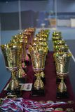 Cups and medals for the winners of the tennis tournament Royalty Free Stock Images