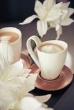 Cups of milk coffee with flowers Stock Images