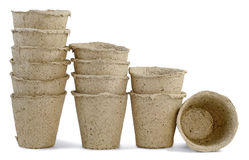 Cups peat a row Royalty Free Stock Image