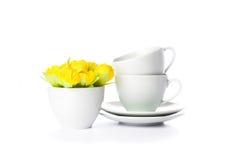 cups saucers Arkivfoto