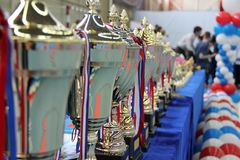 Cups are on the table to award the winners of Taekwondo.  stock image