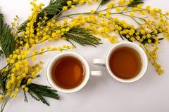 cups tea Arkivbilder