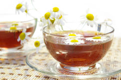 Cups of tea and chamomile blossoms royalty free stock photography