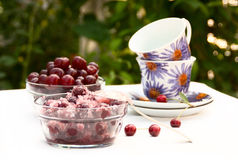 Cups for tea and cherries in sugar. Tea party in the garden. cups for tea and cherries in sugar on the table Stock Photography
