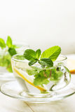Cups of tea with fresh mint Stock Photography