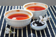 Cups of tea, jar of tea leaves and cherry blossoms Stock Images