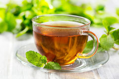 Cups of tea with mint Stock Photography