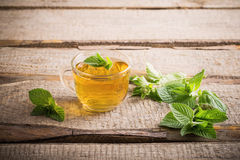 Cups of tea with mint. On wooden stock image