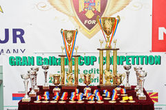 Cups, trophies and medals at Birds Exhibition Stock Images