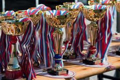 Cups for winners Royalty Free Stock Photo