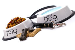 Cura del cane Fotografia Stock