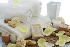 Cura del corpo e di Wellness immagine stock