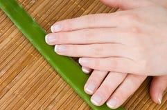 Cura del corpo: mani femminili Fotografia Stock