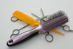 Cura di capelli 1 Immagine Stock Libera da Diritti