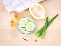 Cura di pelle casalinga con l'aloe naturale vera, limone, c degli ingredienti Immagini Stock