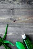 Cura di pelle casalinga L'aloe vera copre di foglie, vetro del succo di vera dell'aloe Immagine Stock