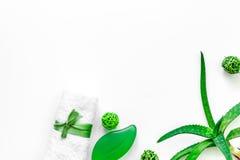 Cura di pelle di erbe naturale L'aloe vera copre di foglie e sapone sul copyspace bianco di vista superiore del fondo Immagine Stock Libera da Diritti