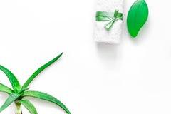 Cura di pelle di erbe naturale L'aloe vera copre di foglie e sapone sul copyspace bianco di vista superiore del fondo Immagini Stock