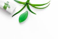 Cura di pelle di erbe naturale L'aloe vera copre di foglie e sapone sul copyspace bianco di vista superiore del fondo Fotografie Stock Libere da Diritti