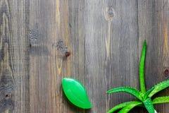 Cura di pelle di erbe naturale L'aloe vera copre di foglie e sapone sul copyspace di legno di vista superiore del fondo Fotografia Stock