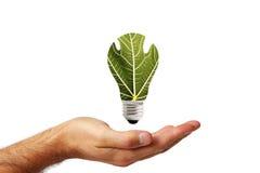 Cura e protezione dell'ambiente Immagini Stock