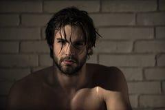 Cura personale uomo sexy con capelli bagnati, ente muscolare nel bagno, doccia immagini stock