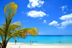 Curacao beach royalty free stock image
