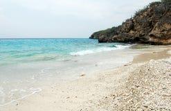 Curacao för kust för korallstrandhav ö Arkivbild