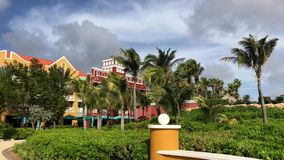 Curacao island. Beautiful nature, windy weather, palm trees and amazing dutch architecture stock video footage