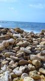 Curacao norrsida Royaltyfri Foto