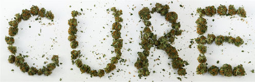 Curación deletreada con marijuana Imagen de archivo libre de regalías
