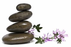 Curative stones and mauve. Curative stones and mauve flowers isolated on a white background Royalty Free Stock Image