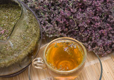 Curative tea with origanum. The image of Curative tea with origanum Stock Photography