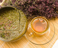 Curative tea with origanum Stock Photography