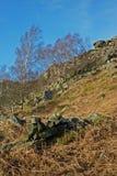 Curbar-Rand, Höchstbezirk, Derbyshire, Lizenzfreies Stockbild