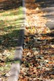 Curbside del otoño Foto de archivo