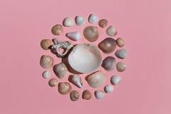 Curcul zrobił od seashells na różowym tle obrazy stock