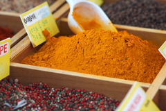 Curcuma and other spices Royalty Free Stock Image