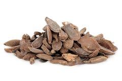 Curcuma Root Stock Images