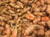 Curcuma or turmeric whole tubers background Royalty Free Stock Images