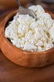 Curd in a bowl Stock Photography