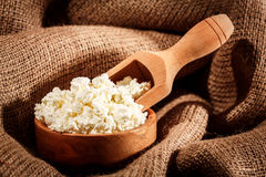 Curd in brown bowl royalty free stock image