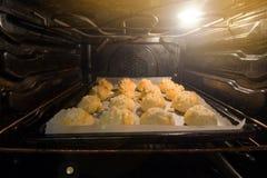 Curd Buns Baking no forno foto de stock
