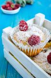 Curd cakes muffins with raspberries Royalty Free Stock Images